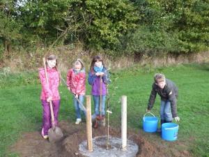 ...40 bis 50 Liter Wasser pro Baum.